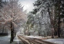 На текущей неделе в Кирове выпадет снег