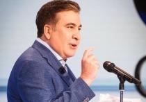 Экс-президент Грузии Михаил Саакашвили опять может стать украинским чиновником