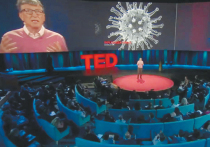 Настоящая зараза: почему Билла Гейтса обвиняют в создании коронавируса
