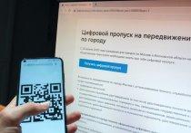 Получение регионами России системы по выдаче цифровых пропусков, разработанной Минкомсвязи, вовсе не означает одновременного введения пропускного режима на этих территориях