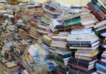 В рамках нацпроекта «Культура» обновят Ижевскую сельскую библиотеку