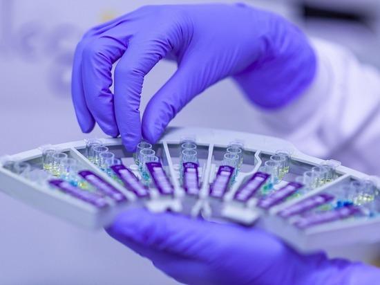 Германия: Коронавирус может повредить сердце, кишечник, почки