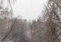 Петрозаводск засыпало снегом