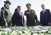 Главный храм Вооруженных сил России возводится в честь 75-летия Победы в Великой Отечественной войне