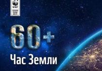 Куряне одни из самых активных участников акции «Час Земли-2020»