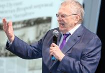 Пластмассовый мир победил партию Владимира Жириновского
