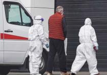 В Госдуме с коронавирусом госпитализировали четырех водителей