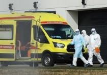 Врач тульской больницы стал жертвой коронавируса