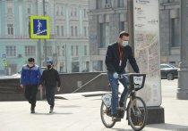 Во время эпидемического форс-мажора перемещение по городу превращается в настоящую «русскую рулетку»: заразишься – не заразишься