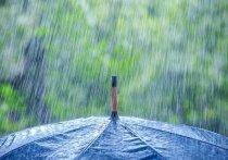 Начало недели в Белгороде окажется дождливым