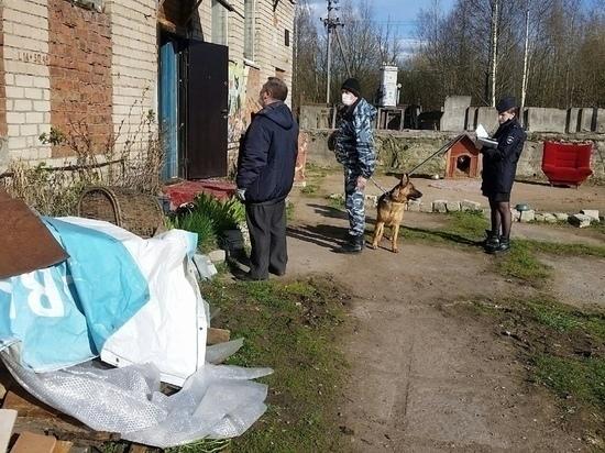 Полицейские нашли украденный у псковской «Зоозащиты» генератор