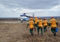 Кобылкин пообещал направить 100 пожарных парашютистов в Забайкалье