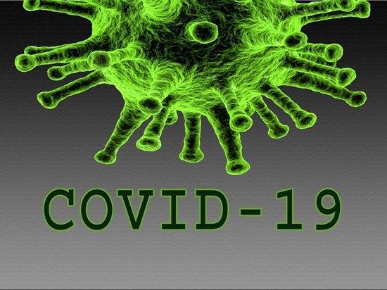 Медики: в каком месяце завершится вспышка коронавируса в России