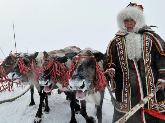 В ЯНАО единороссы предложили удвоить «кочевые выплаты» для тундровиков