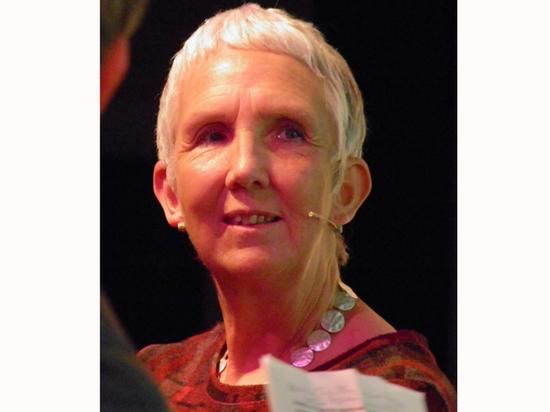 Энн Кливз: «Спекуляция на тему вируса — самое пугающее»