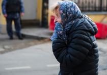 Предоставить право на прогулку пожилым людям, женщинам с детьми и людям, страдающим сердечно-сосудистыми заболеваниями, предложили в Совете при Президенте Российской Федерации по развитию гражданского общества и правам человека (СПЧ)