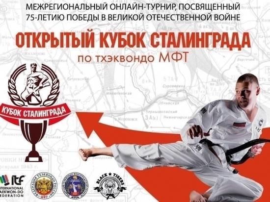 В Волгограде предложили провести дистанционный турнир по тхэквондо