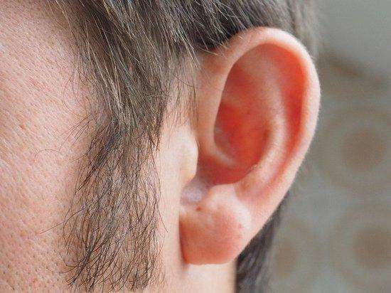 Оголодавший в самоизоляции москвич откусил ухо охраннику магазина - МК