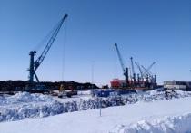 ПОРА: «Драйвером развития Арктики станет Северный морской путь»