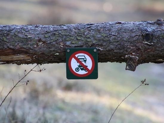Доступ и работы ограничат в мае в некоторых лесах Забайкалья
