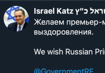 Глава МИД Израиля пожелал российскому премьер-министру выздоровления