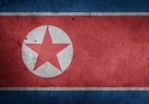 В Госдуме прокомментировали данные о смерти Ким Чен Ына