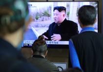 Врач поставил Ким Чен Ыну диагноз по видео
