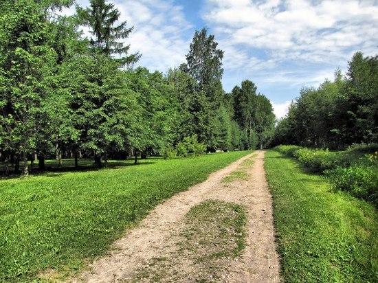 В Петербурге 11 человек оштрафовали за прогулки в парках