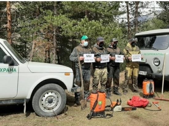 В лесничествах Дагестана усиливают патрули