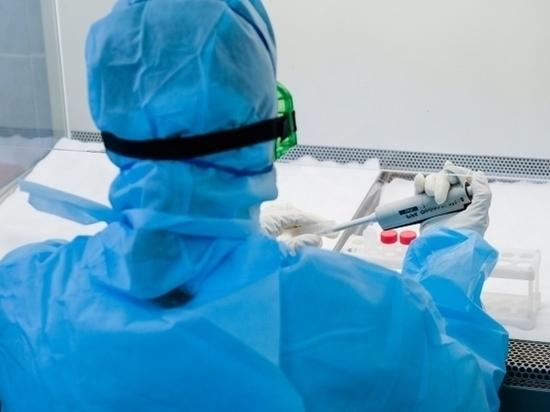 В Волгоградской области число больных COVID-19 достигло 474 человек