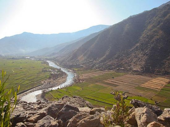 В Афганистане заявили о смерти мигрантов в Иране