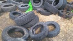 Старые шины выкидывают в лесу рядом с магистральным газопроводом