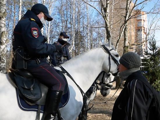 Нижегородские парки объезжают конные патрули