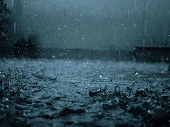 МЧС: в Тверской области 5 мая ожидается сильный ливень и гроза