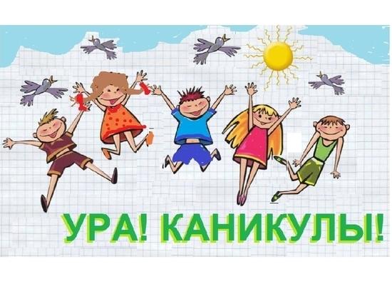 Костромские школьники могут уйти на летние каникулы уже с 15 мая - МК  Кострома
