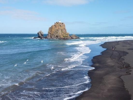 Без денег и без помощи: челябинцы застряли в Новой Зеландии из-за пандемии коронавируса
