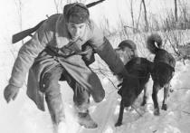 Нанануне Дня Победы Музей Москвы открывает два онлайн-проекта, посвященных Великой Отечественной войне
