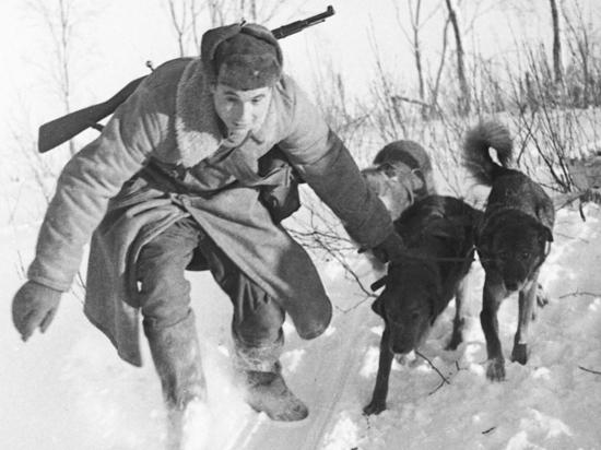 Опубликованы уникальные фотохроники Великой Отечественной
