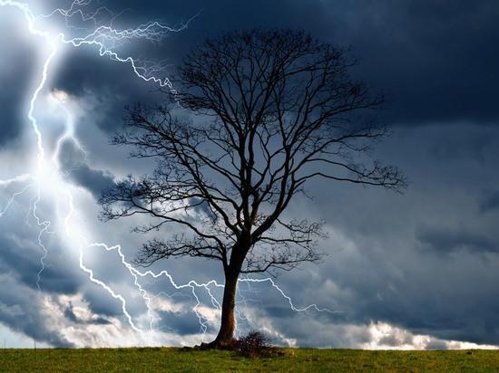 Костромской МЧС предупреждает: Буря, скоро грянет буря