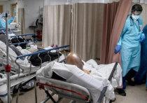 «Катастрофа второй недели»: врачи рассказали как протекает болезнь у разных пациентов с СOVID-19