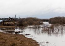 Подтопления при вскрытии Амура ожидаются на севере Хабаровского края