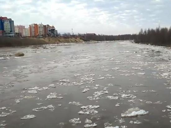 В Новом Уренгое начался ледоход
