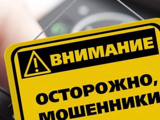 Полиция Петербурга выпустила листовки с предупреждением о мошенничестве