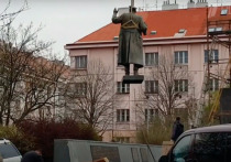 Москва прокомментировала данные о «рициновом отравителе» из России