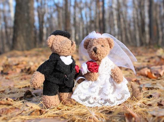 В Архангельской области за апрель зарегистрировали брак 287 пар