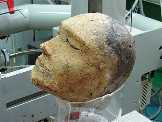 Российские ученые нашли в захороненной человеческой голове череп барана