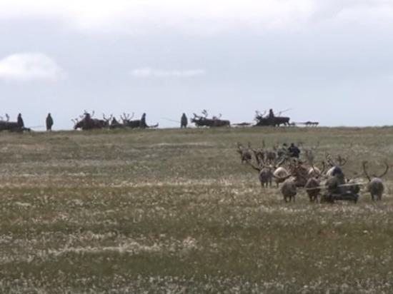 СМИ: 13 мая запустят процедуру объединения Архангельской области с НАО
