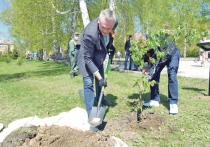 Новосибирский регион немного ослабил режим повышенной опасности