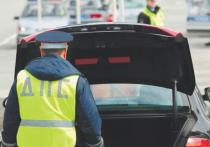 Новый закон о полиции: россиянам мало не покажется