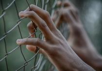 В Энгельсе сотрудник УФСИН осужден за то, что пронес в колонию мобильный и сим-карты для заключенных